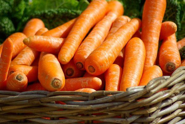 интересные факты о моркови фото