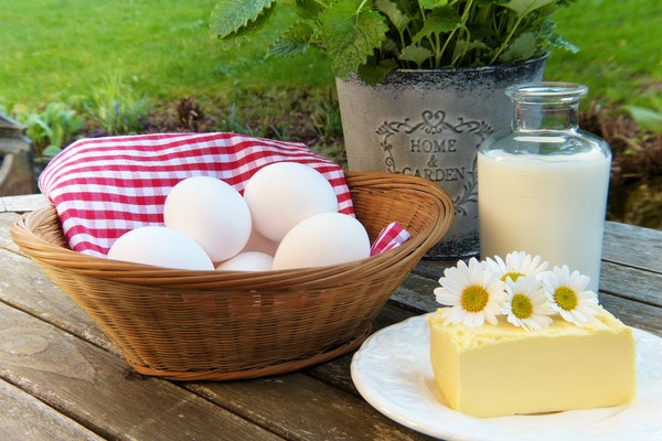 яичная диета фото