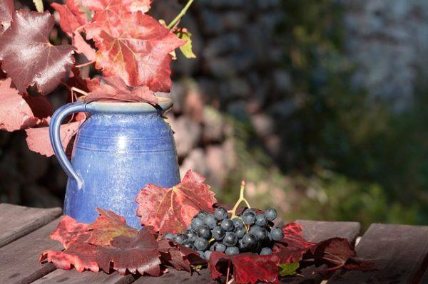 виноград и похудение фото