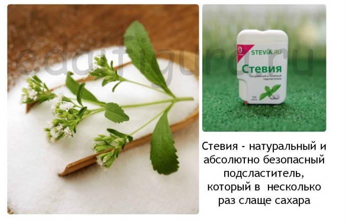 stevia -2