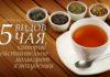 польза чая для организма фото