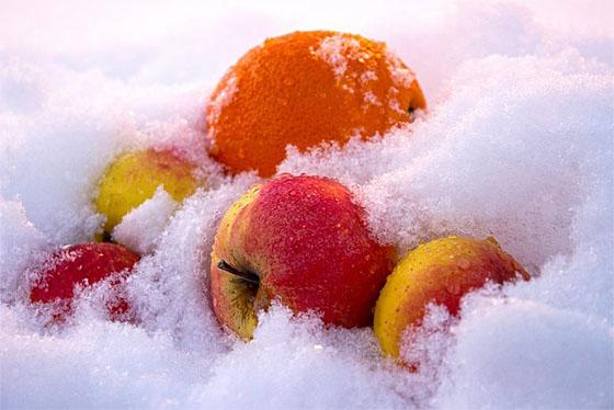 какие фрукты