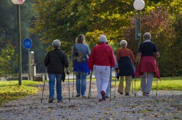 Скандинавская ходьба фото